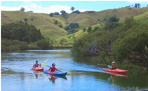 Puhoi river kayaking